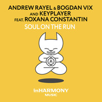 Thumbnail for the Andrew Rayel - Soul On The Run link, provided by host site