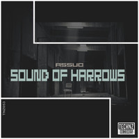 Thumbnail for the Assuc - Sound Of Harrows link, provided by host site