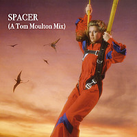 Thumbnail for the Sheila - Spacer (A Tom Moulton Mix) link, provided by host site