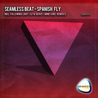 Thumbnail for the Following Light - Spanish Fly - Following Light Remix link, provided by host site