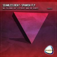 Thumbnail for the Ilya Gerus - Spanish Fly - Ilya Gerus's the Raid Remix link, provided by host site