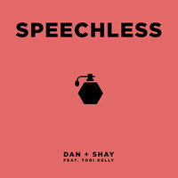 Thumbnail for the Dan + Shay - Speechless link, provided by host site