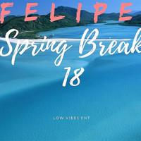 Thumbnail for the Felipe - Spring Break 18 link, provided by host site