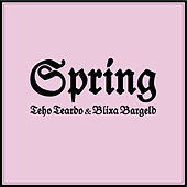 Thumbnail for the Blixa Bargeld - Spring link, provided by host site