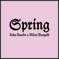Thumbnail for the Teho Teardo - Spring link, provided by host site