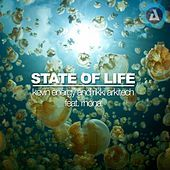 Thumbnail for the Kevin Energy - State Of Life link, provided by host site