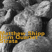 Thumbnail for the Matthew Shipp - Strata link, provided by host site
