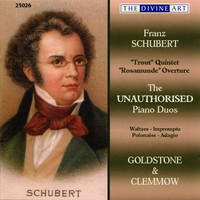 Thumbnail for the Ede Poldini - Study (after F. Schubert's 4 Impromptus, Op. 90, D. 899, No. 2) link, provided by host site