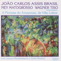 Thumbnail for the Jaques Morelenbaum - Suite I Na Floresta - Dança I link, provided by host site