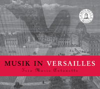 Thumbnail for the Marin Marais - Suite in D Minor: V. Menuet link, provided by host site