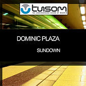 Thumbnail for the Dominic Plaza - Sundown link, provided by host site