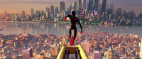 Sunflower spider man into the spider verse 420f590d 67ff 4934 a681 7a8b36785750 thumb