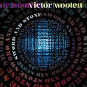 Thumbnail for the Victor Wooten - Sword and Stone link, provided by host site