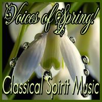 Thumbnail for the Hector Berlioz - Symphonie Fantastique, Op. 14 (Episode de la vie d'un artiste) : II. Un Bal (A Ball) link, provided by host site