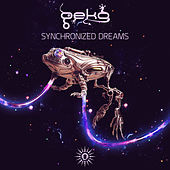 Thumbnail for the Geko - Synchronized Dreams link, provided by host site