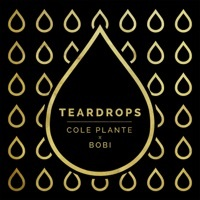Thumbnail for the Cole Plante - Teardrops link, provided by host site
