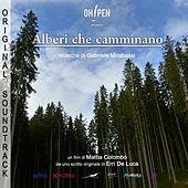 Thumbnail for the Gabriele Mirabassi - Tema fugato degli alberi link, provided by host site