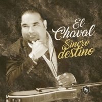 Thumbnail for the El Chaval de la Bachata - Tengo link, provided by host site
