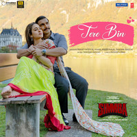 """Thumbnail for the Rahat Fateh Ali Khan - Tere Bin (From """"Simmba"""") link, provided by host site"""