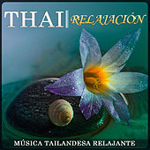 Thumbnail for the Estudios Talkback - Thai Relajación. Música Tailandesa Relajante  link, provided by host site