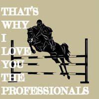 Thumbnail for the The Professionals - That's Why I Love You link, provided by host site