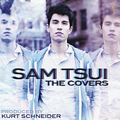 Thumbnail for the Sam Tsui - The Covers link, provided by host site