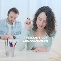 Thumbnail for the Exam Study Classical Music Orchestra - The Exam: Study and Concentrate link, provided by host site