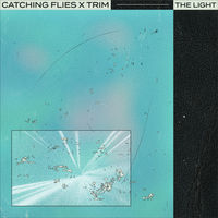 Thumbnail for the Catching Flies - The Light link, provided by host site