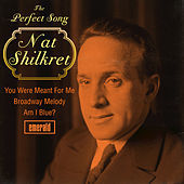 Thumbnail for the Nat Shilkret - The Perfect Song link, provided by host site