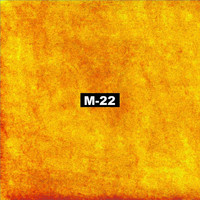 Thumbnail for the M-22 - The Preview link, provided by host site