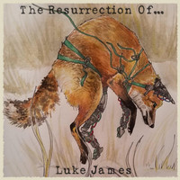 Thumbnail for the Luke James - The Resurrection Of... link, provided by host site
