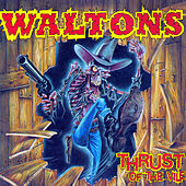 Thumbnail for the The Waltons - Thrust of the Vile link, provided by host site