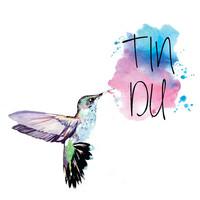 Thumbnail for the Mirabai Ceiba - Tindu link, provided by host site