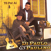 Thumbnail for the Di Paullo & Paulino - Tô por Aí link, provided by host site