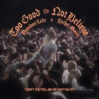 Thumbnail for the Bethel Music - Too Good To Not Believe link, provided by host site