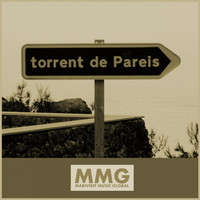 Thumbnail for the Various Artists - Torrent de Pareis link, provided by host site