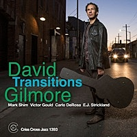 Thumbnail for the David Gilmore - Transitions link, provided by host site