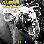 Thumbnail for the Cianna Blaze - Triggered link, provided by host site