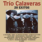 Thumbnail for the Trío Calaveras - Trío Calaveras: 20 Éxitos link, provided by host site