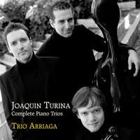 Thumbnail for the Joaquín Turina - Trío No. 1 en Re Mayor, Op. 35: II. Tema con variaciones link, provided by host site