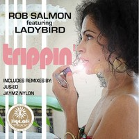 Thumbnail for the Rob Salmon - Trippin' Remastered link, provided by host site