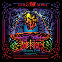 Thumbnail for the The Allman Brothers Band - Trouble No More link, provided by host site