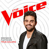 Thumbnail for the Brendan Fletcher - True Colors (The Voice Performance) link, provided by host site