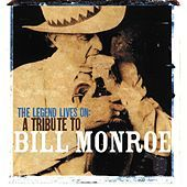 Thumbnail for the Del McCoury - True Life Blues link, provided by host site