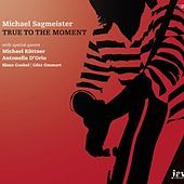 Thumbnail for the Michael Sagmeister - True To The Moment link, provided by host site
