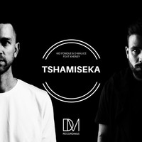 Thumbnail for the Kid Fonque - Tshamiseka link, provided by host site