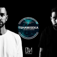 Thumbnail for the Kid Fonque - Tshamiseka (Jazzuelle Remixes) link, provided by host site