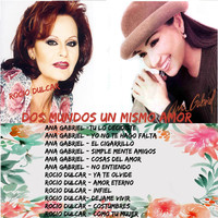 Thumbnail for the Ana Gabriel - Tu Lo Decidiste link, provided by host site