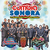 Thumbnail for the La Sonora Santanera - Tu Voz link, provided by host site