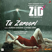 "Thumbnail for the Sharib Sabri - Tu Zaroori (From ""Zid"") link, provided by host site"